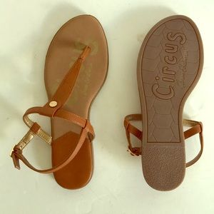 New Circus by Sam Edelman Caiden thong sandals